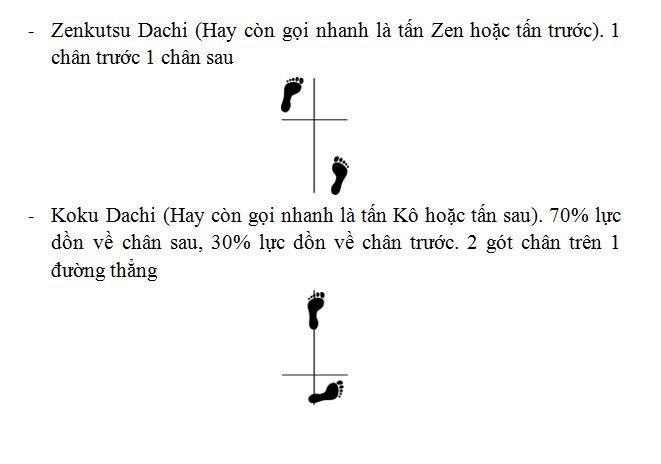 Tấn - Daichi Captur12