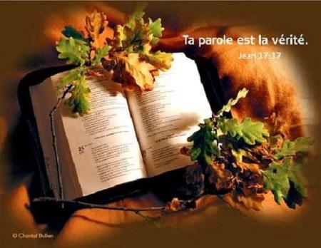 *Donne-nous notre Pain de ce jour (Vie) : Parole de DIEU *, *L'Évangile et le Livre du Ciel* - Page 5 86om9910