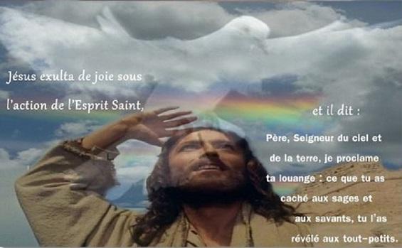 *Donne-nous notre Pain de ce jour (Vie) : Parole de DIEU *, *L'Évangile et le Livre du Ciel* - Page 9 Exulta10