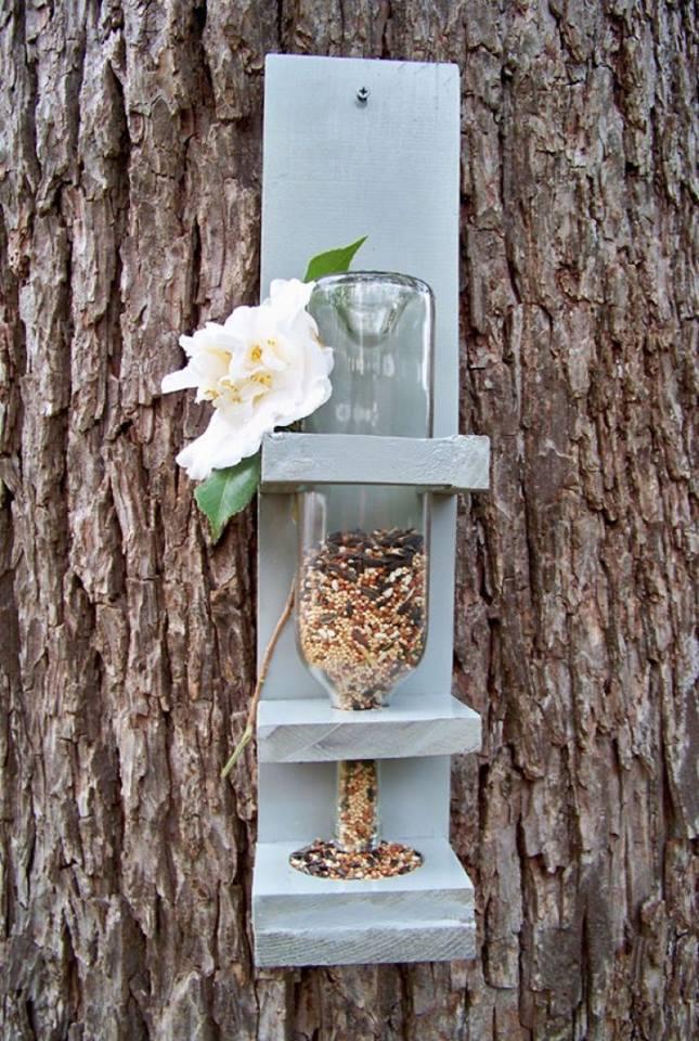 Idées et astuces pour oiseaux 11866410