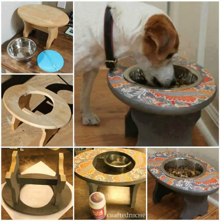Idées et astuces pour Chiens et chats! 11898510