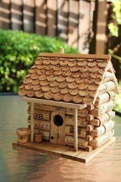 Idées et astuces pour oiseaux 12074511