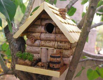 Idées et astuces pour oiseaux 12088510