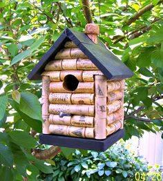 Idées et astuces pour oiseaux 12107011