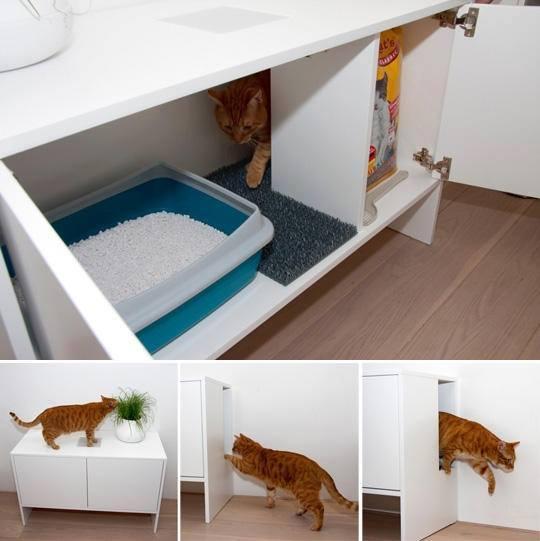 Idées et astuces pour Chiens et chats! 12107711