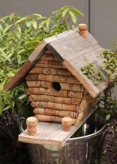 Idées et astuces pour oiseaux 12108710