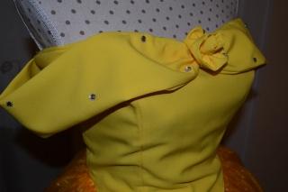 [Costumes] Robes de Princesses et tenues de Princes - Page 2 Dsc_0615