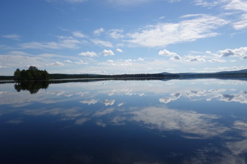 Séjour Suède et blog : Fishing Aventures  Dsc01310