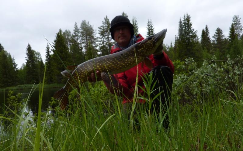 Séjour Suède et blog : Fishing Aventures  P1060211