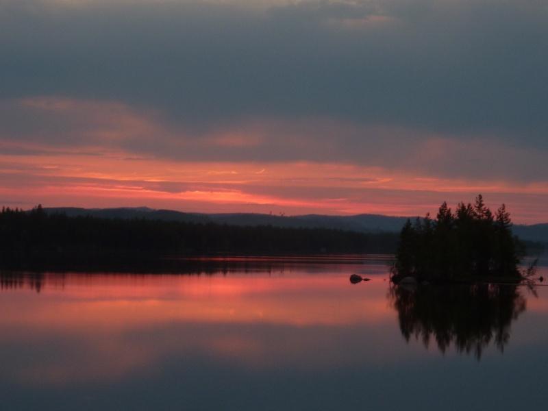Séjour Suède et blog : Fishing Aventures  P1060310