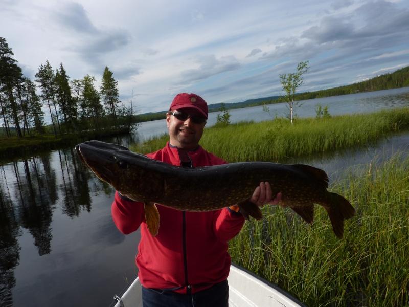 Séjour Suède et blog : Fishing Aventures  P1060413