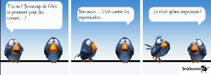 3ème rafale de birds 2015 ? Cc10