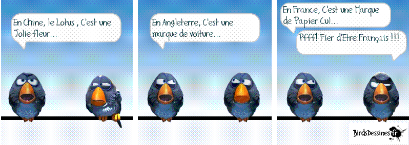 3ème rafale de birds 2015 ? Dd10