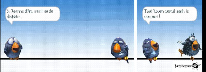 3ème rafale de birds 2015 ? Ee10