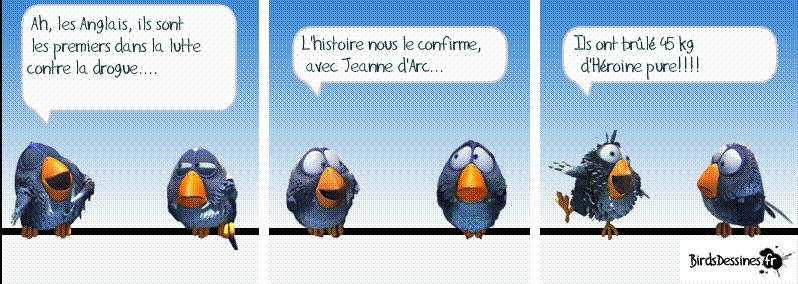 3ème rafale de birds 2015 ? Hh10