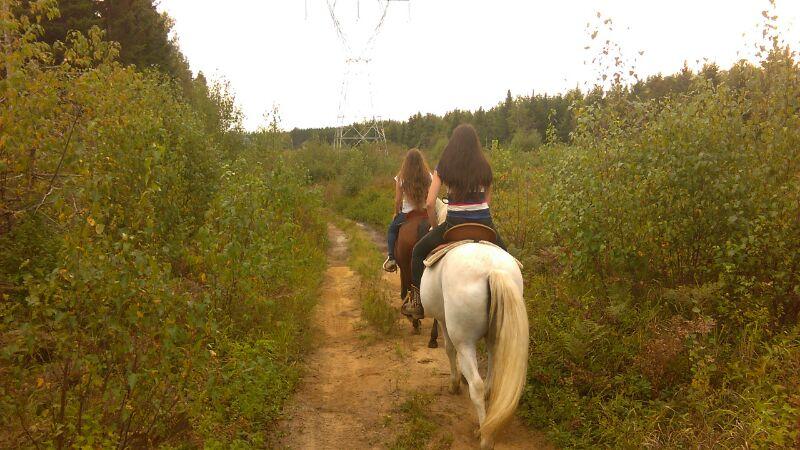 Ballades à cheval  A10be010