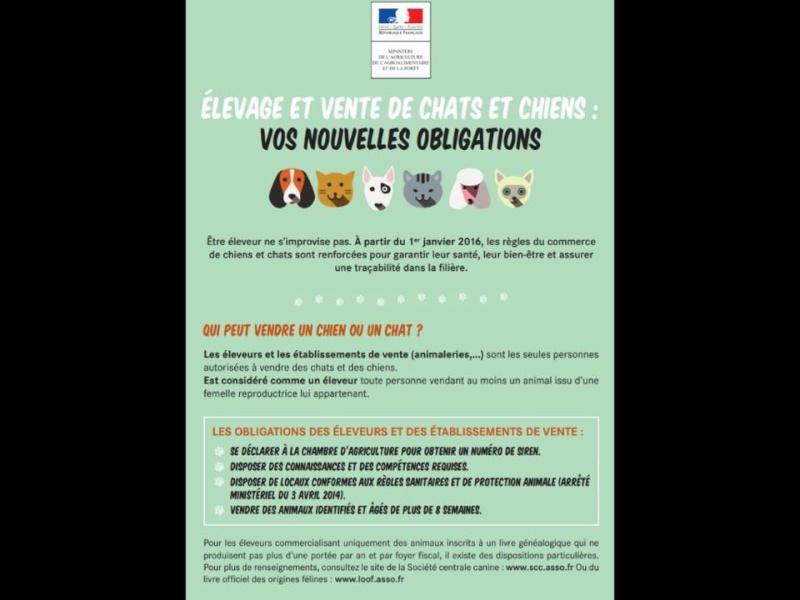 Nouvelle loi sur la vente des animaux sur internet Vente_10