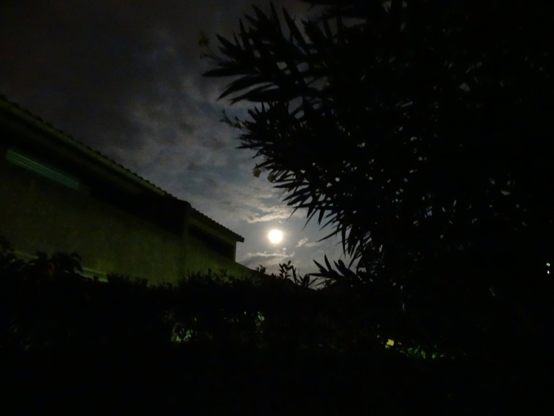 Remarquer vous ca quand c`est la pleine lune ? Dsc03213