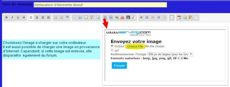 6- Comment insérer une image dans votre message ? Insyre13