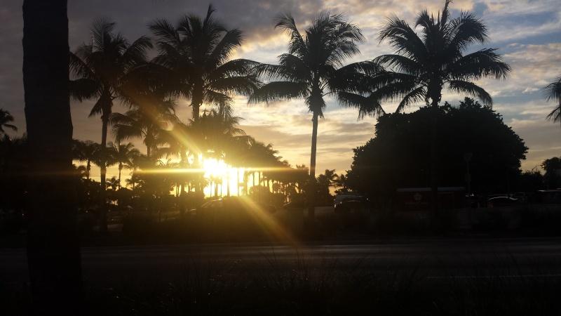 Road Trip Floridien : Le rêve de 2 soeurs - Du 4 au 21 Octobre 2015 (MAJ : 21/05/2017) - TR Terminé - Page 3 20151028