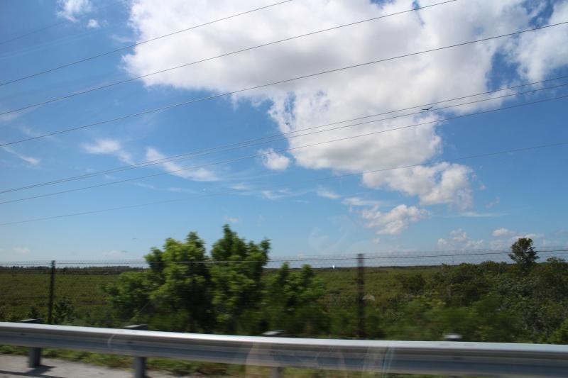 Road Trip Floridien : Le rêve de 2 soeurs - Du 4 au 21 Octobre 2015 (MAJ : 21/05/2017) - TR Terminé - Page 3 Img_3610