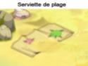 Indices Chasse aux trésors et Portail. Servie10