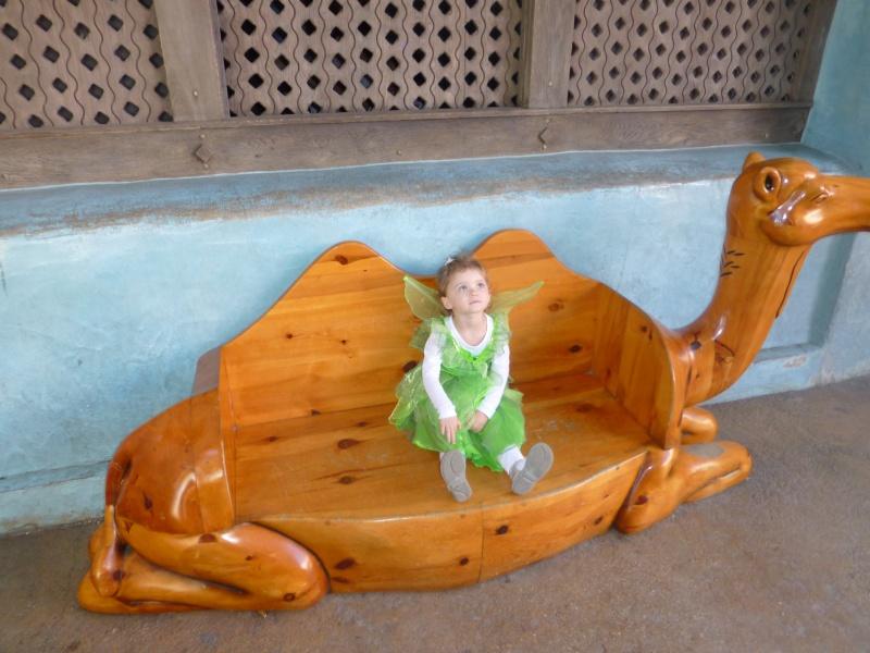 TR du 10 au 12 Septembre Sequoia Lodge en GFC..... P1040825