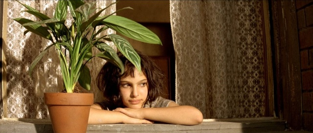 """Cténanthe (comment s'appelle la plante du film """"Léon"""" ?) Still_10"""