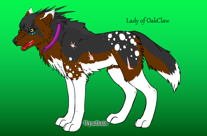 Create Your Wolf Here Lady10