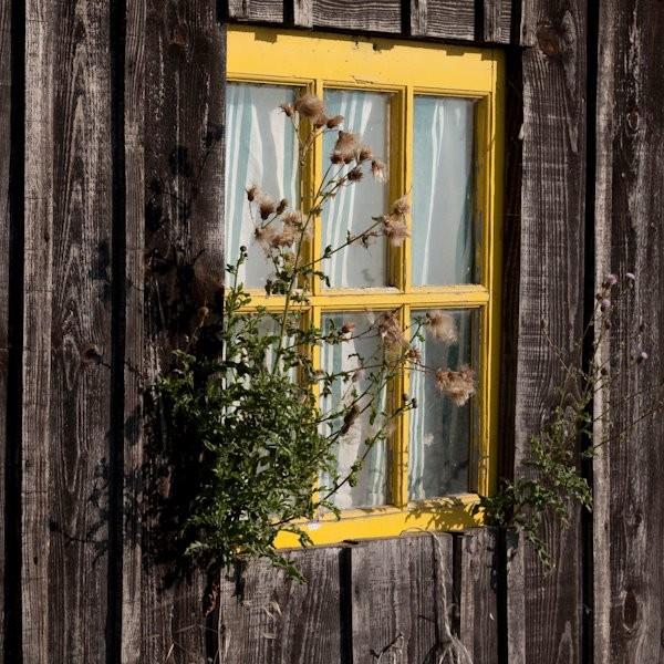 Des fenêtres d'hier et d'aujourd'hui. - Page 20 F0db2310