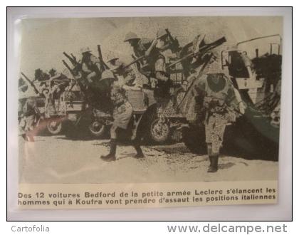 Libye KOUFRA Koufra12