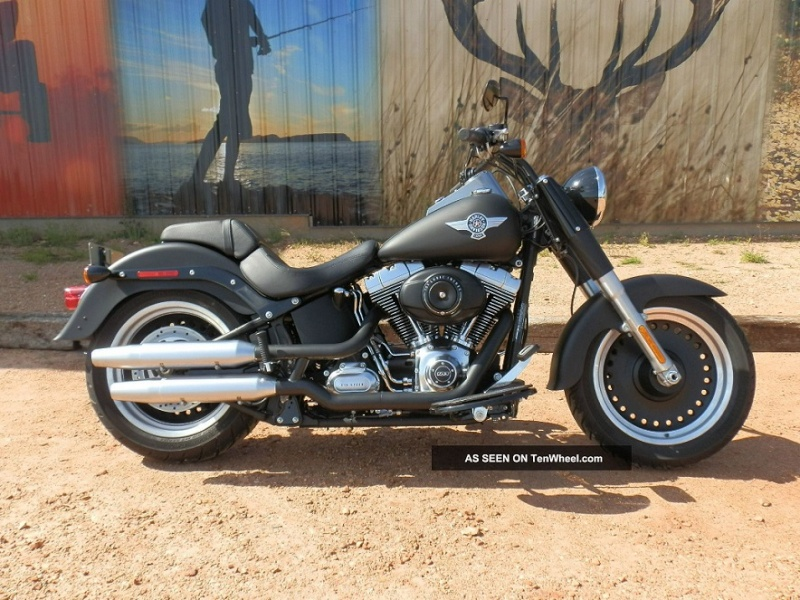 Softail FAT BOY Harley11