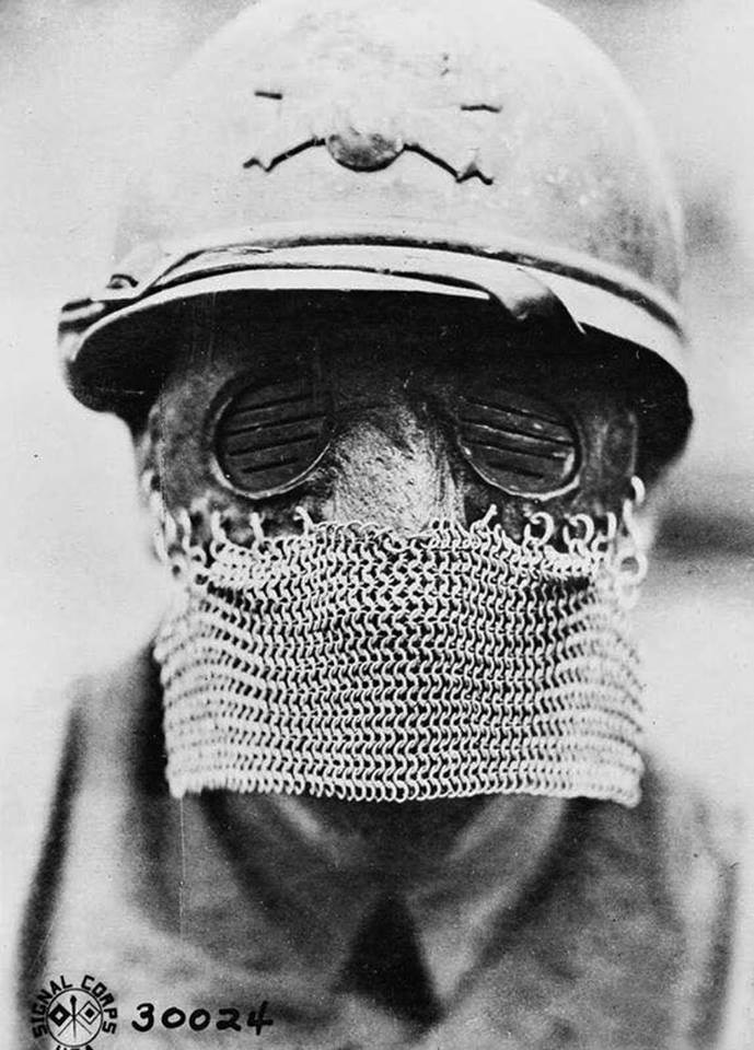 Masque de tankiste 1917 - 1918 44372814