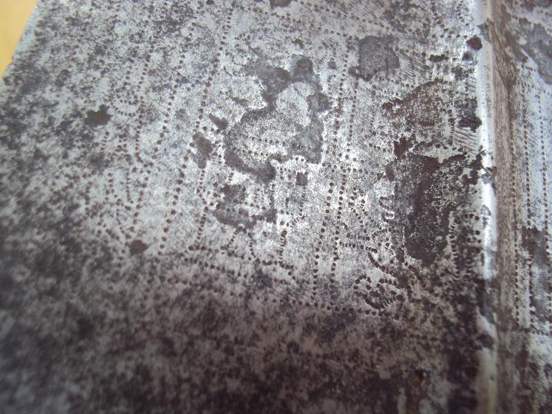 Pertuisane XVI ème siècle Dsc04093