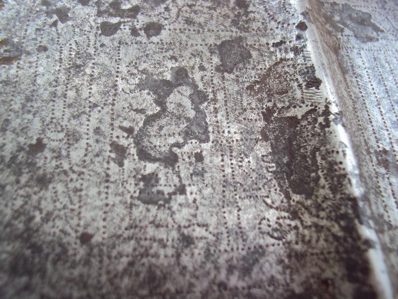 Pertuisane XVI ème siècle Dsc04100