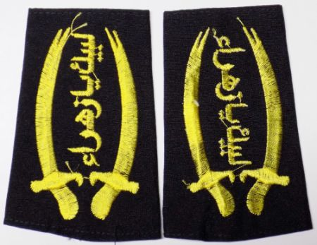 Peace Brigades and Brigades of the Popular Defense patches - Page 2 Labaek12