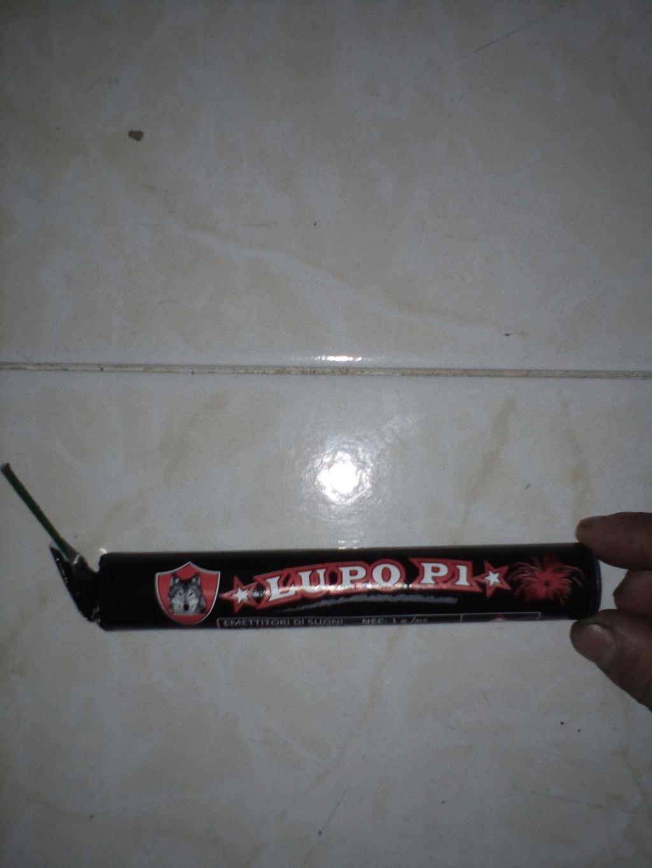 Lupo P1 Img_2035