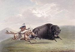 [Grainville, Patrick] Bison 250px-10