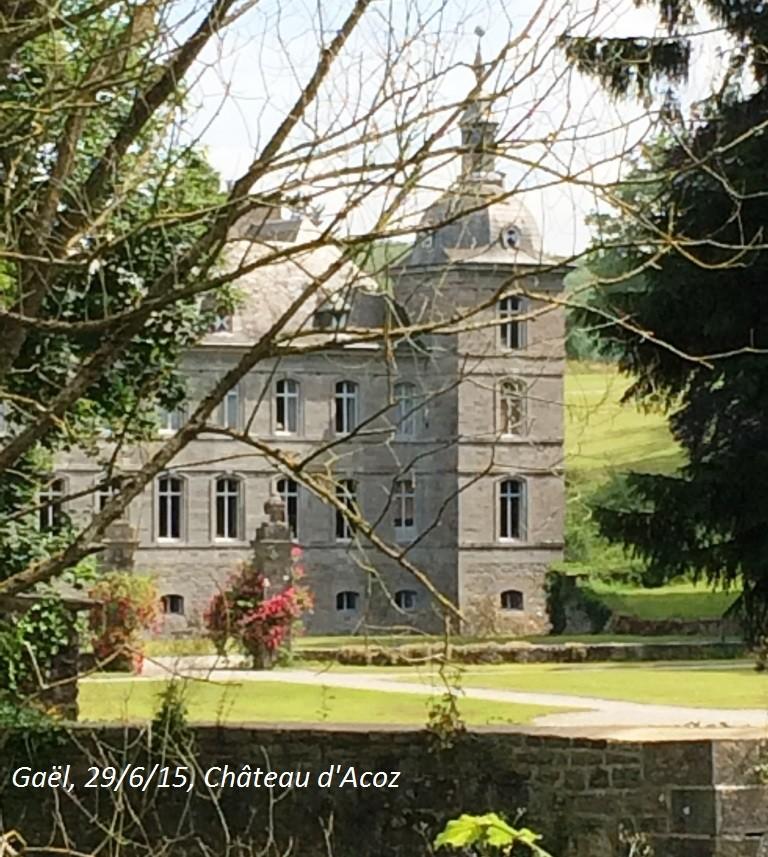 CR du 29-6-15, à l'assaut des châteaux pour Gaël... 1012