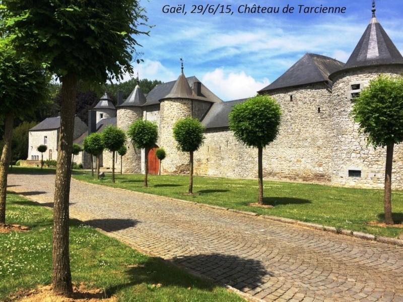 CR du 29-6-15, à l'assaut des châteaux pour Gaël... 2312