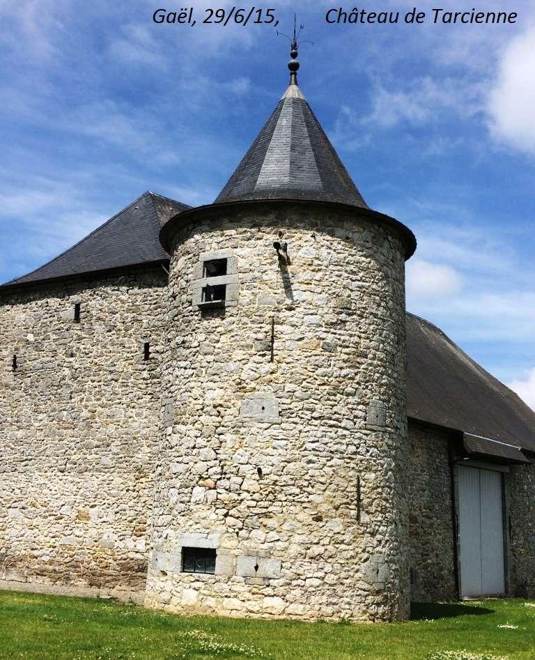 CR du 29-6-15, à l'assaut des châteaux pour Gaël... 2412