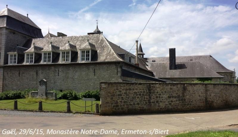 CR du 29-6-15, à l'assaut des châteaux pour Gaël... 3712