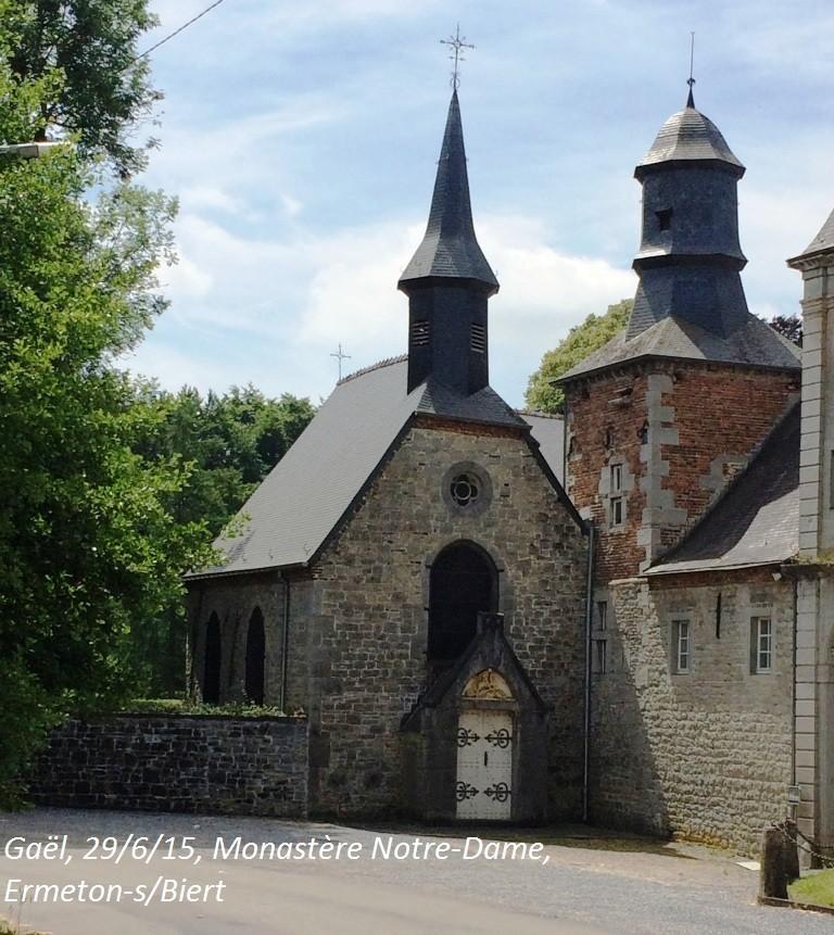 CR du 29-6-15, à l'assaut des châteaux pour Gaël... 3912