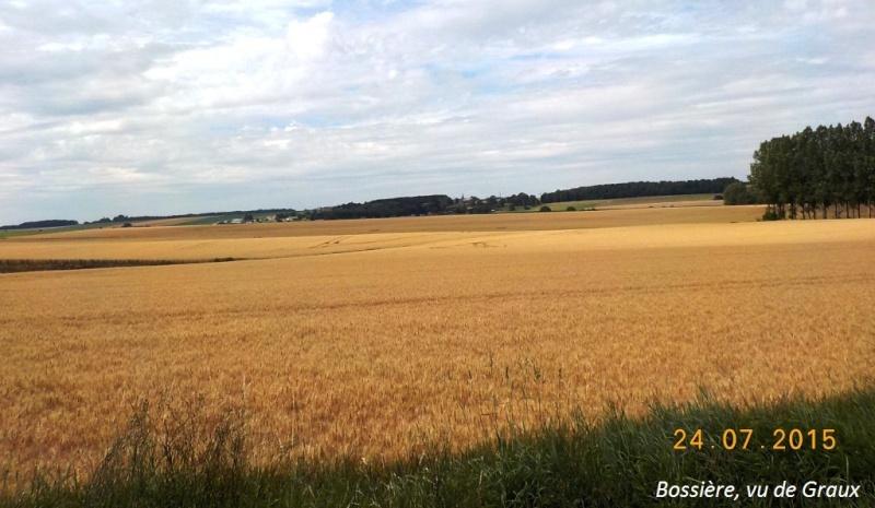 CR du 24/7/15, en explorant la berge gauche de la Meuse entre Dinant et Namur 612