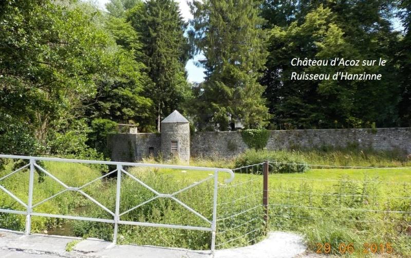 CR du 29-6-15, à l'assaut des châteaux pour Gaël... 712