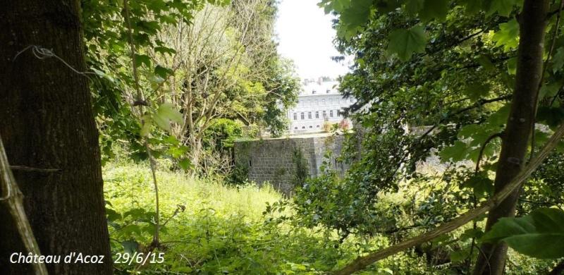 CR du 29-6-15, à l'assaut des châteaux pour Gaël... 812