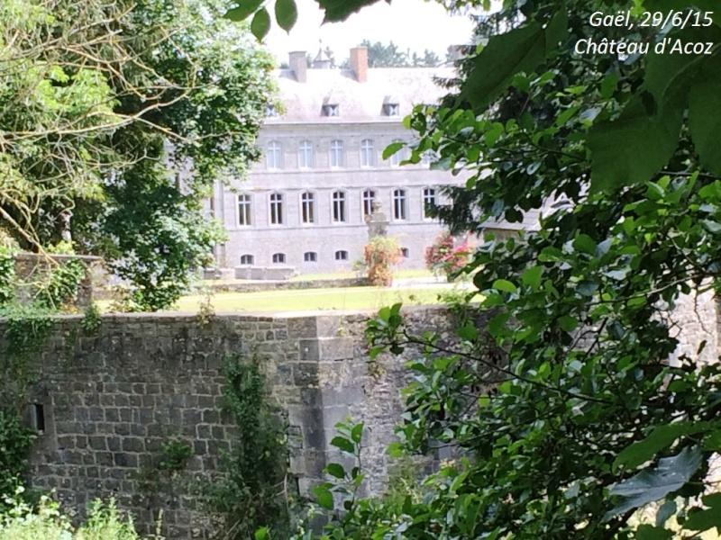 CR du 29-6-15, à l'assaut des châteaux pour Gaël... 912