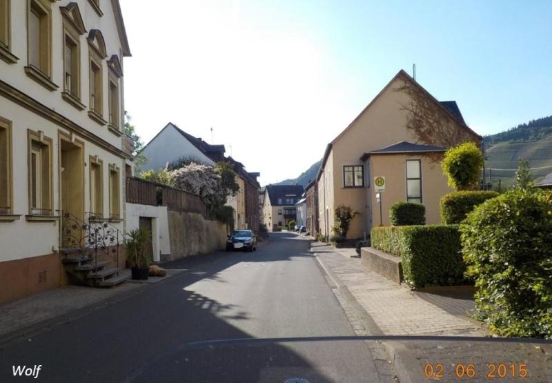 CR de juin 2015 en Moselle allemande (1) Dscn0828