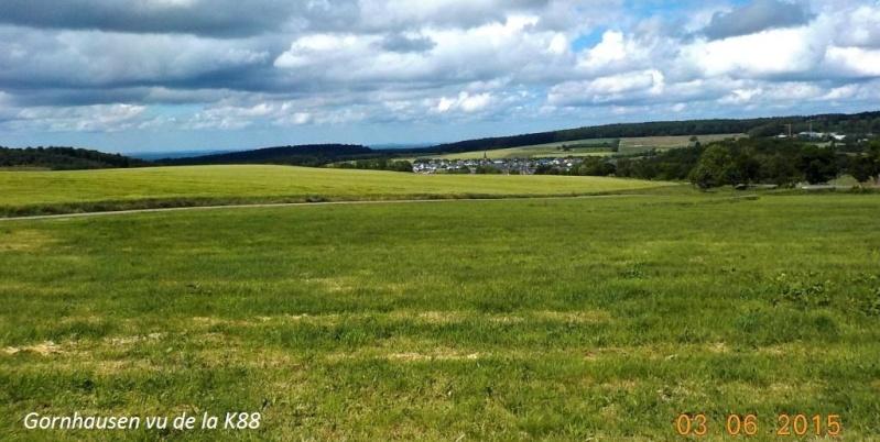 CR de juin 2015 en Moselle allemande (2) Dscn0834