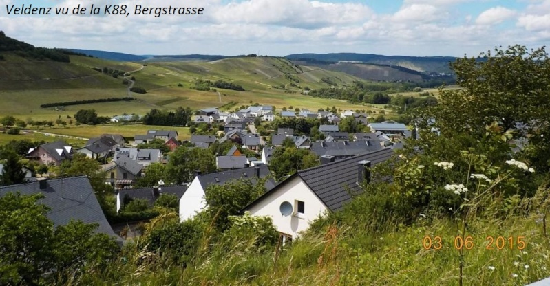 CR de juin 2015 en Moselle allemande (2) Dscn0842